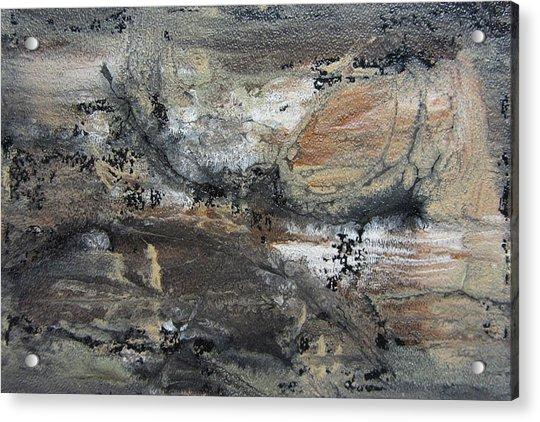 Abstract Earthy Texture  Acrylic Print