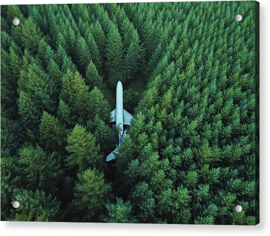 Airplane In Forest Acrylic Print