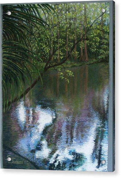 Alafia River Reflection Acrylic Print