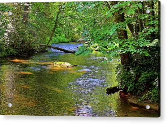 Along The Cullasaja River Acrylic Print