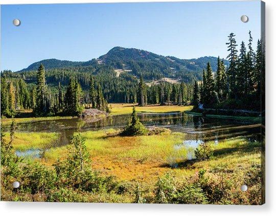 Alpine Meadows - 1 Acrylic Print