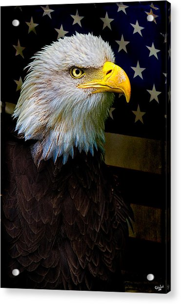 Acrylic Print featuring the photograph An American Icon by Chris Lord