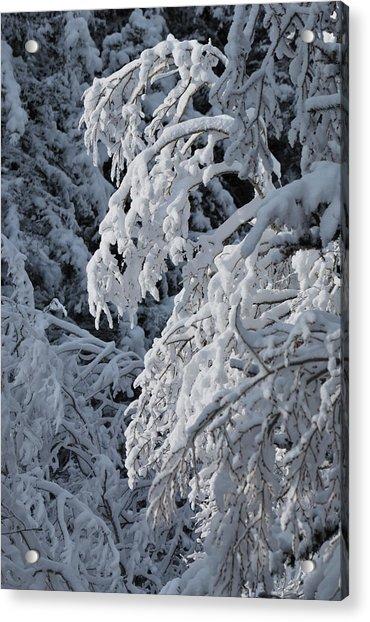 April Snow Acrylic Print