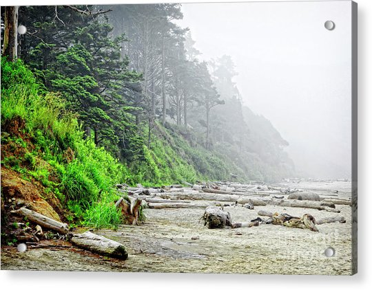 Arcadia Beach In Morning Fog Acrylic Print by Lincoln Rogers
