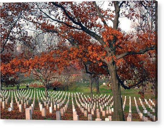 Acrylic Print featuring the photograph Arlington Cemetery In Fall by Carolyn Marshall