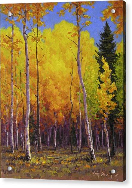 Aspen Glow Painting By Cody Delong