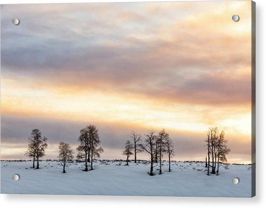 Aspen Hill At Sunset Acrylic Print