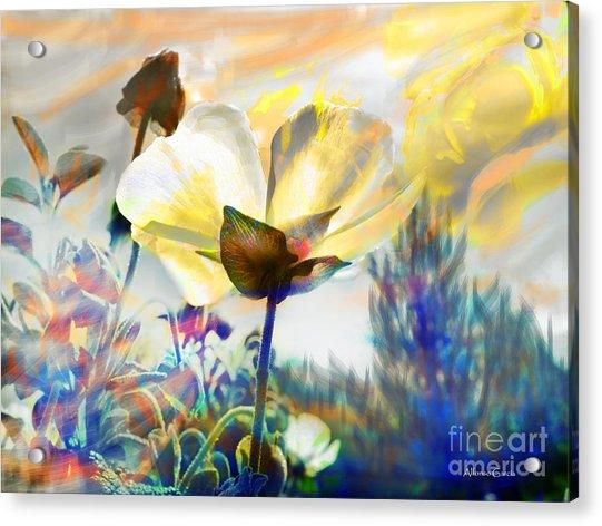 Atardecer En Primavera Acrylic Print