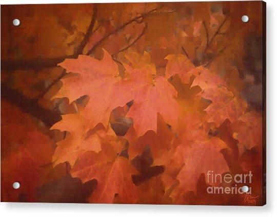 Autumn 2 Acrylic Print