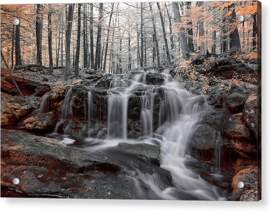 Autumn In Spring Infrared Acrylic Print