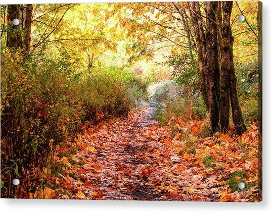 Autumn Morning Acrylic Print