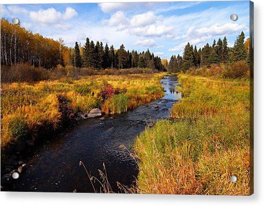 Autumn On Jackfish Creek Acrylic Print