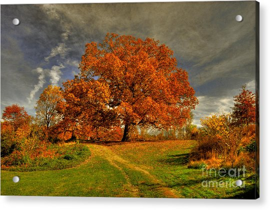 Autumn Picnic On The Hill Acrylic Print