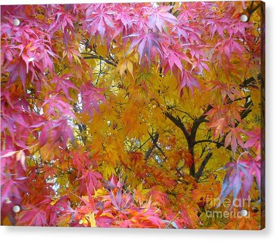 Autumn Pink Acrylic Print
