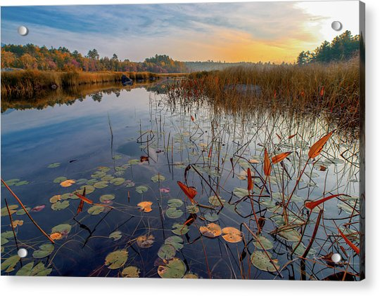Autumn Sunrise At Compass Pond Acrylic Print
