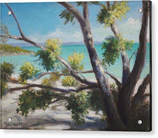 Bahamas Shade Acrylic Print
