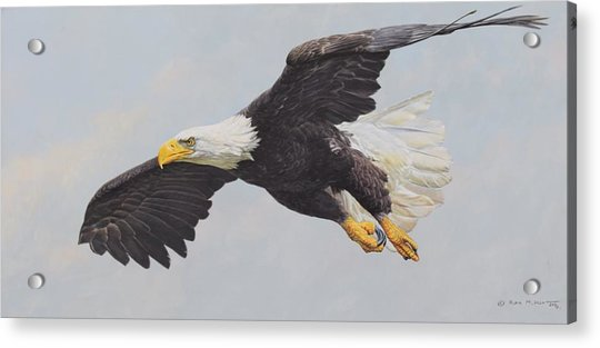 Acrylic Print featuring the painting Bald Eagle by Alan M Hunt