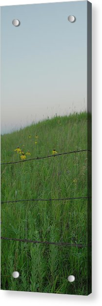 Barb Wire Prairie Acrylic Print