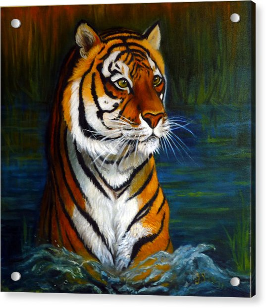 Bathing Tiger Acrylic Print by Janet Silkoff