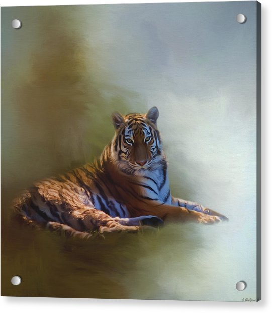 Be Calm In Your Heart - Tiger Art Acrylic Print