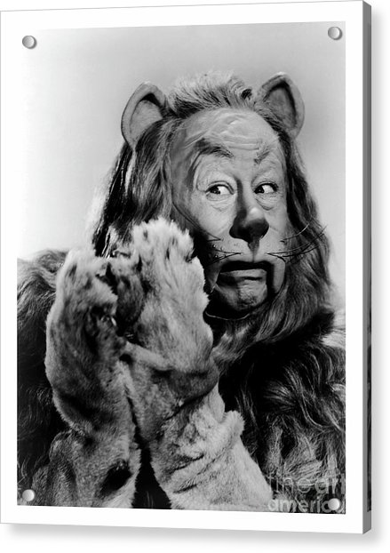 Cowardly Lion In The Wizard Of Oz Acrylic Print