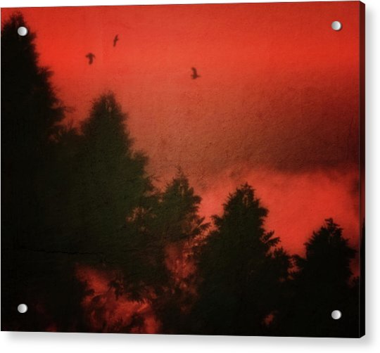 Acrylic Print featuring the photograph Birds In A Red Sky by Jan Keteleer