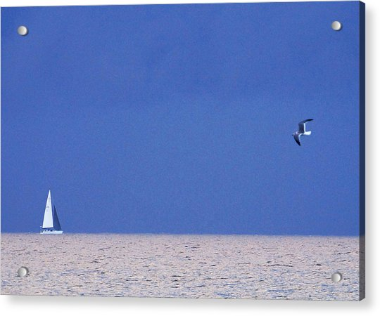 Black And White Sailboat And Seagull Acrylic Print