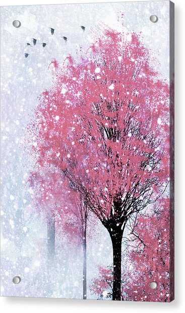 Blossoms In Winter Wall Art Acrylic Print