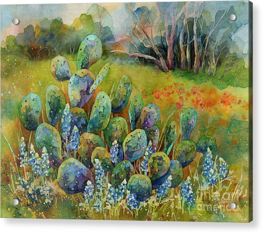 Bluebonnets And Cactus Acrylic Print