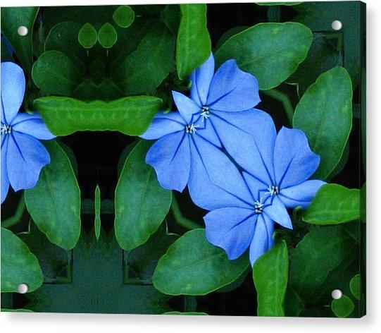 Bluegreencomp 2006 Acrylic Print