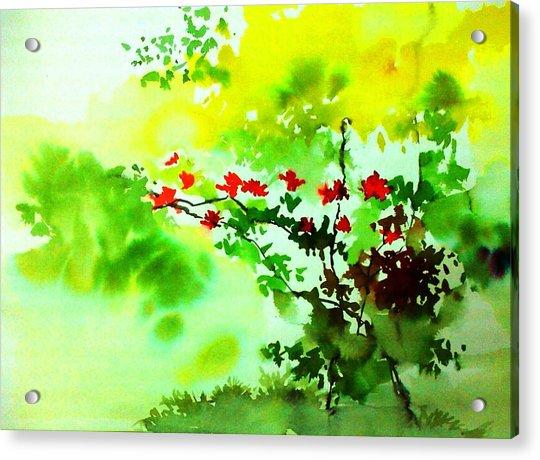 Boganwel Acrylic Print