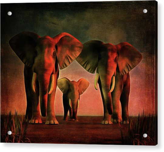 Acrylic Print featuring the painting Bonjour La by Jan Keteleer