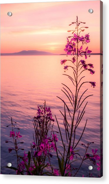 Acrylic Print featuring the photograph Bouquet For A Sleeping Lady by Tim Newton