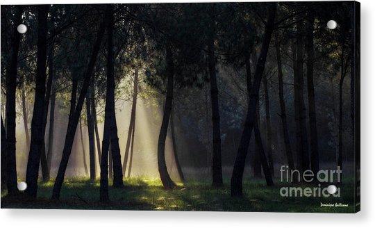 Broceliand's Light Acrylic Print