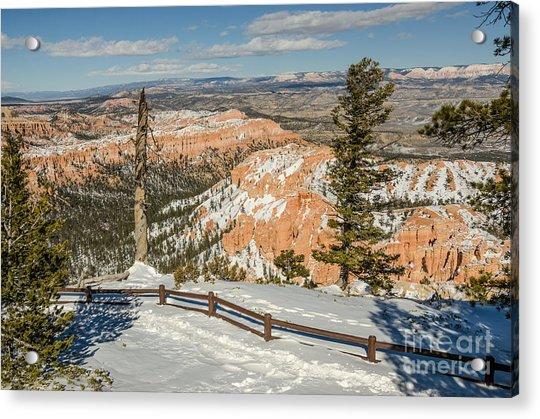 Bryce Amphitheater From Bryce Point Acrylic Print