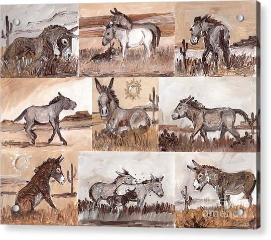 Burros Of The South West Sampler Acrylic Print
