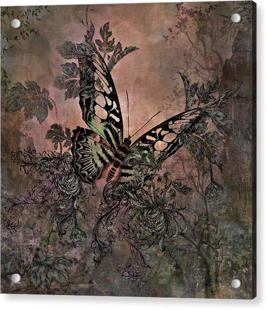 Butterfly Dream 02 Acrylic Print