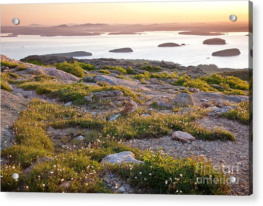 Cadillac Mountain View Acrylic Print