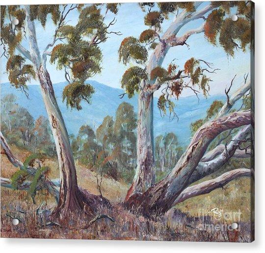 Canberra Hills Acrylic Print