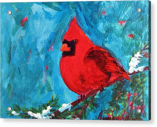 Cardinal Red Bird Watercolor Modern Art Acrylic Print