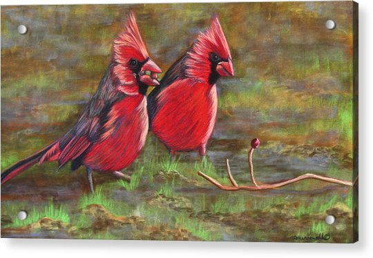 Cardinal Two Acrylic Print by Tracey Hunnewell