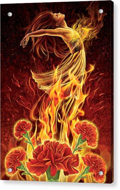 Carnation - Rebirth Acrylic Print