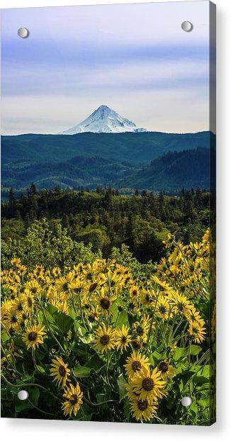 Cascade Spring Acrylic Print