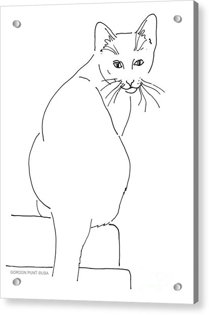 Cat-artwork-prints Acrylic Print