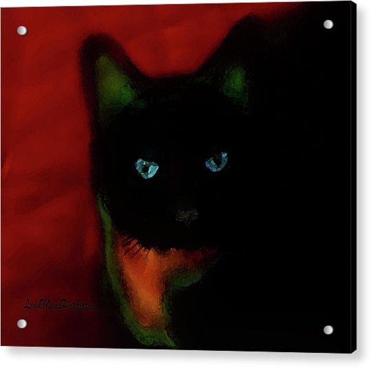 Cat Tiny You Painting Acrylic Print