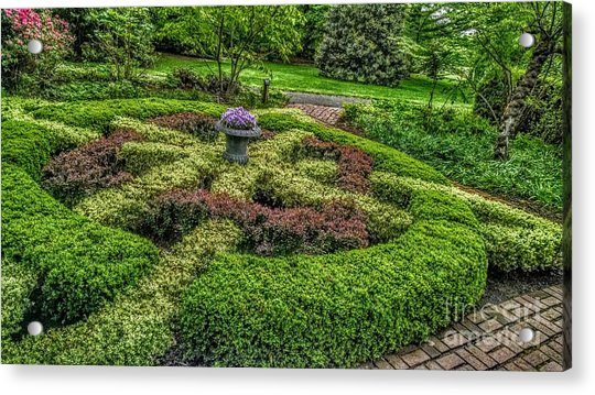 Celtic Topiary At Frelinghuysen Arboretum Acrylic Print