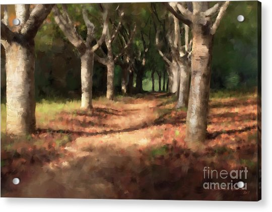 Acrylic Print featuring the digital art Changing Of Seasons by Dwayne Glapion
