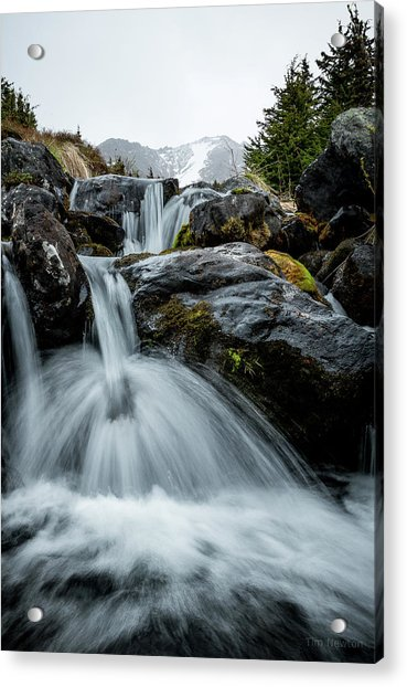 Acrylic Print featuring the photograph Chilly Spring Shower by Tim Newton