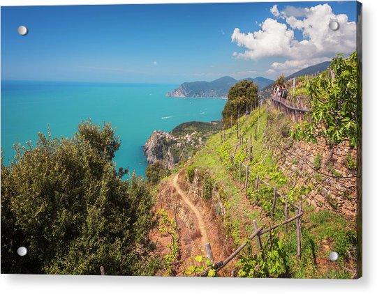 Cinque Terre Italy Vineyard Walk Acrylic Print