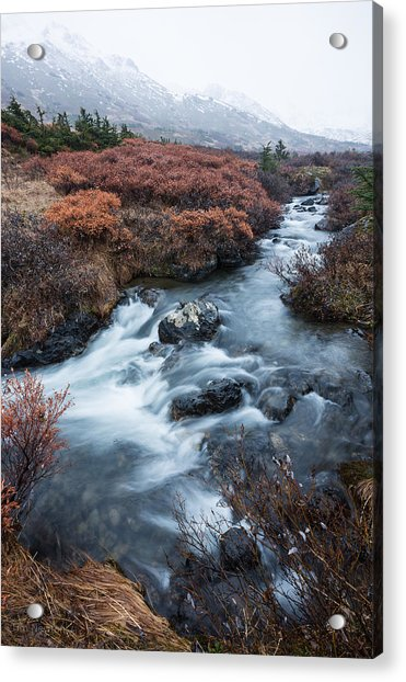 Acrylic Print featuring the photograph Cold Creek In Autumn by Tim Newton